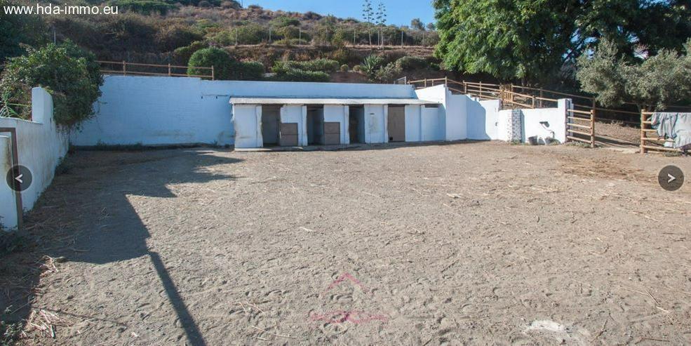 Haus in 29680 - Estepona - Haus kaufen - Bild 4