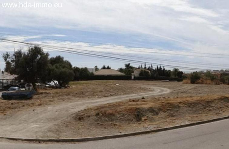 Bild 2: Grundstueck in 29680 - Estepona