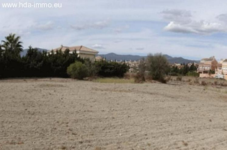 Bild 3: Grundstueck in 29680 - Estepona