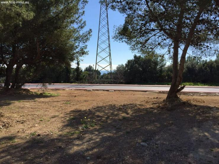 Bild 2: Grundstueck in 29600 - Marbella