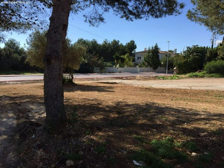 Bild 3: Grundstueck in 29600 - Marbella