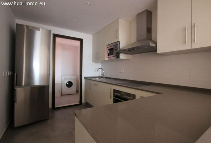 Bild 5: : gigantisches Penthouse mit abolutem Meerblick in Casaras DONA JULIA