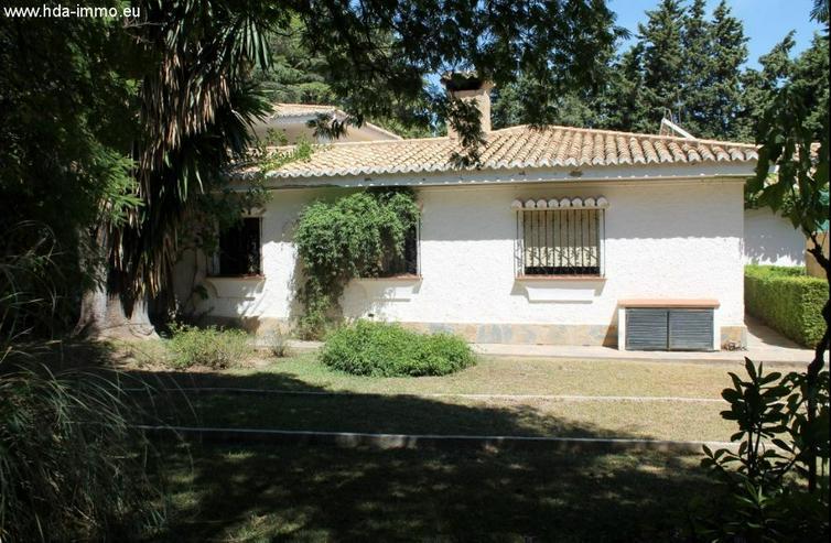 Bild 6: : 10 SZ Villa mit gewaltigen Grundstück in Banalmadena Pueblo