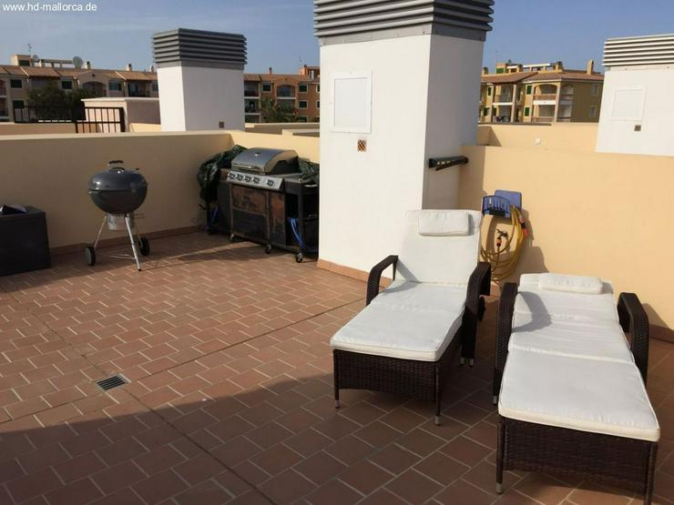 Bild 2: : 2 SZ Penthouse in Cala Magrana (Meerblick, Meernähe)