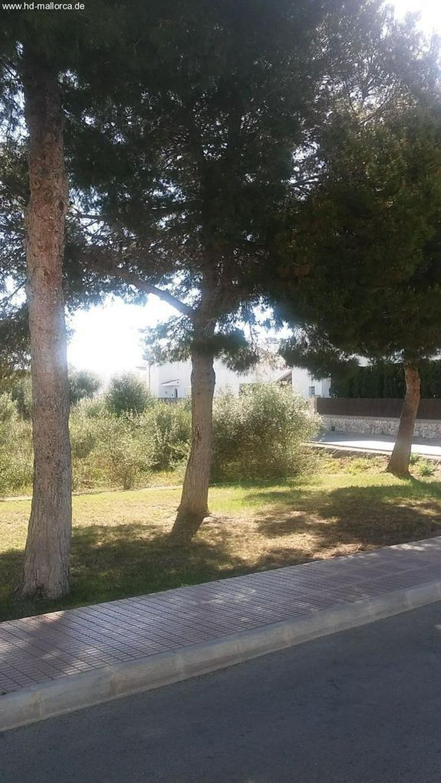Bild 3: : Neubau, Bauhausstil, Strandnahe Villa 3 SZ in Cala Dor