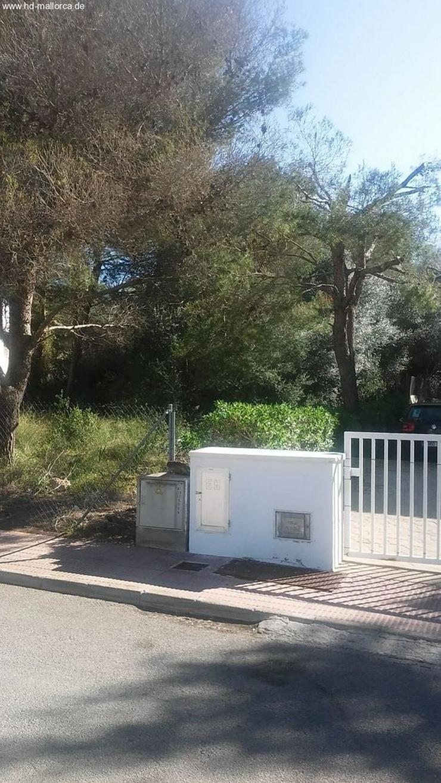 : Neubau, Bauhausstil, Strandnahe Villa 3 SZ in Cala Dor - Haus kaufen - Bild 1