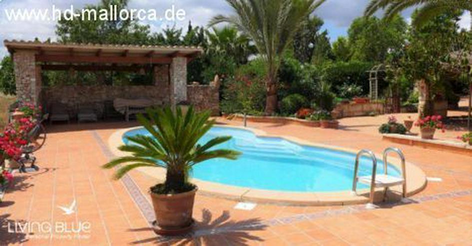 Bild 5: Haus in 07450 - Santa Margalida