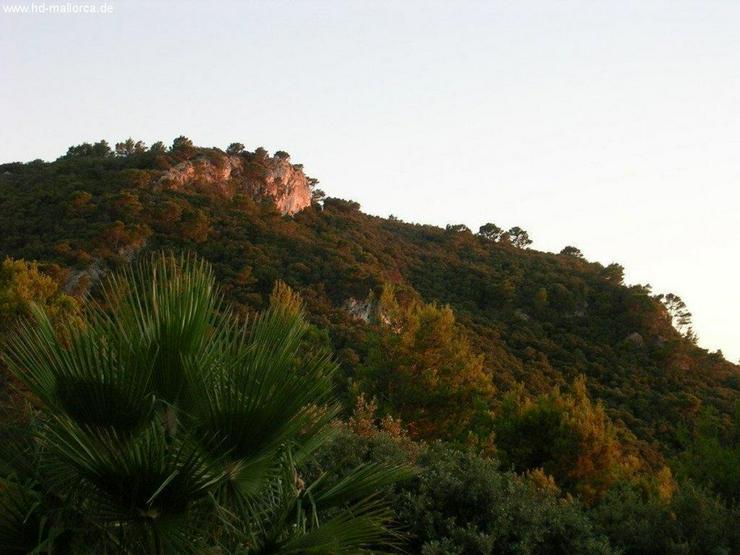 Bild 5: Haus in 07170 - Valldemossa