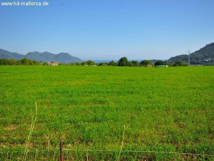 Grundstueck in 07560 - Cala Millor - Grundstück kaufen - Bild 1