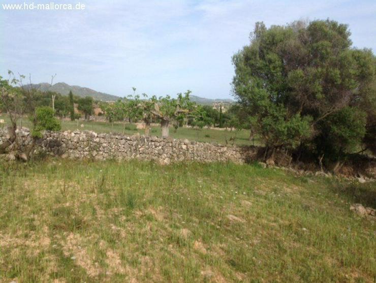 Bild 4: Grundstueck in 07530 - San Lorenzo