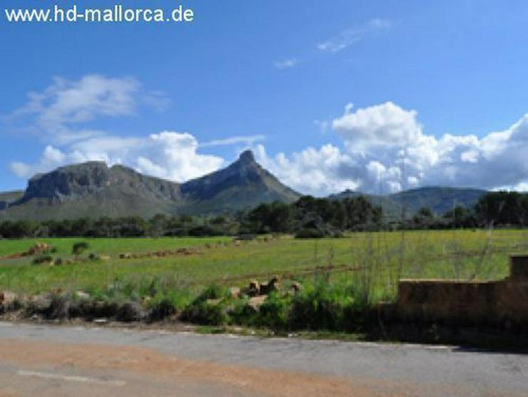 Grundstueck in 07579 - Colonia San Pere