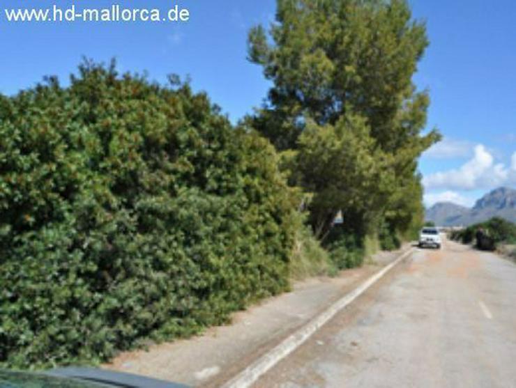 Bild 4: Grundstueck in 07579 - Colonia San Pere