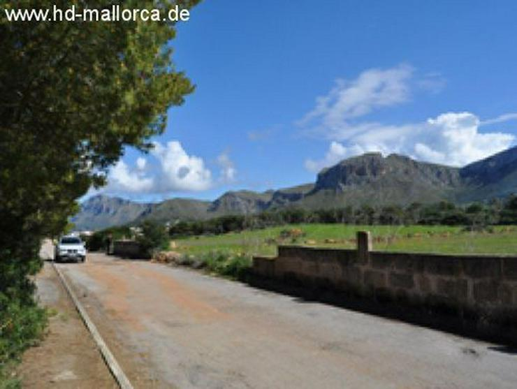 Bild 3: Grundstueck in 07579 - Colonia San Pere