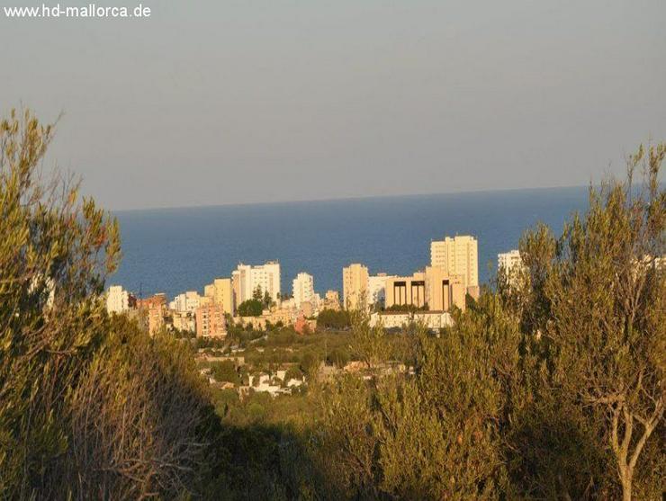 Grundstueck in 07560 - NA CALA Penyal MILLOR - Auslandsimmobilien - Bild 1