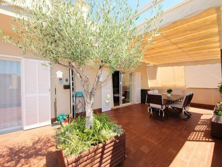 Bild 2: Wohnung in 07559 - Cala Bona