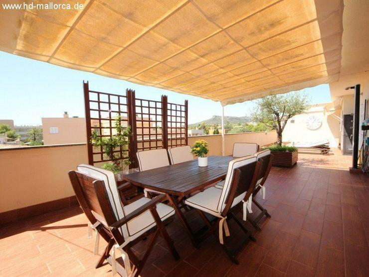 Wohnung in 07559 - Cala Bona - Wohnung kaufen - Bild 1