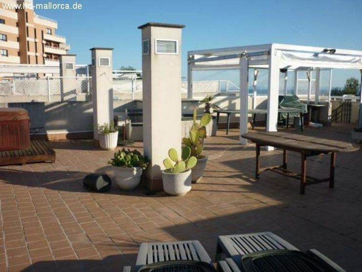 Wohnung in 07001 - Palma de Mallorca - Bild 1
