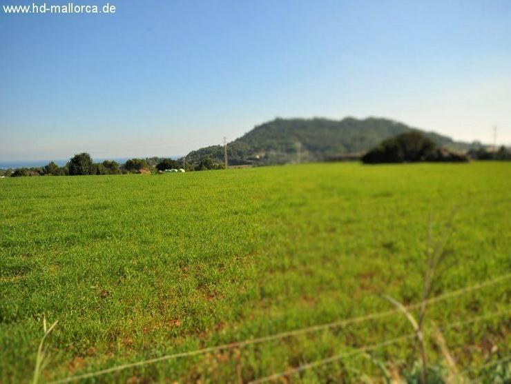 Grundstueck in 07560 - Cala Millor - Auslandsimmobilien - Bild 1