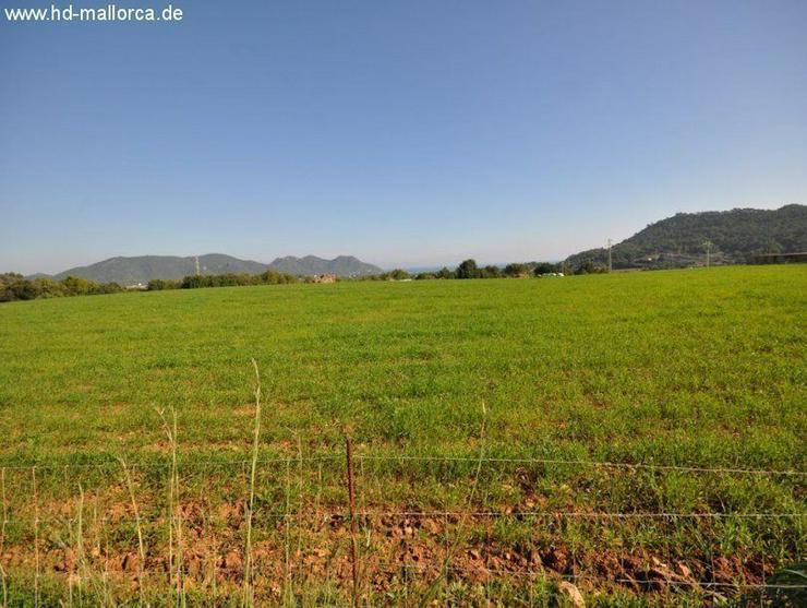 Bild 5: Grundstueck in 07560 - Cala Millor