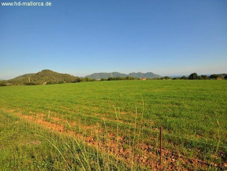 Bild 3: Grundstueck in 07560 - Cala Millor