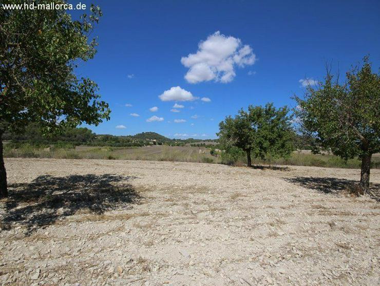 Grundstueck in 07250 - Vilafranca de Bonany - Auslandsimmobilien - Bild 1