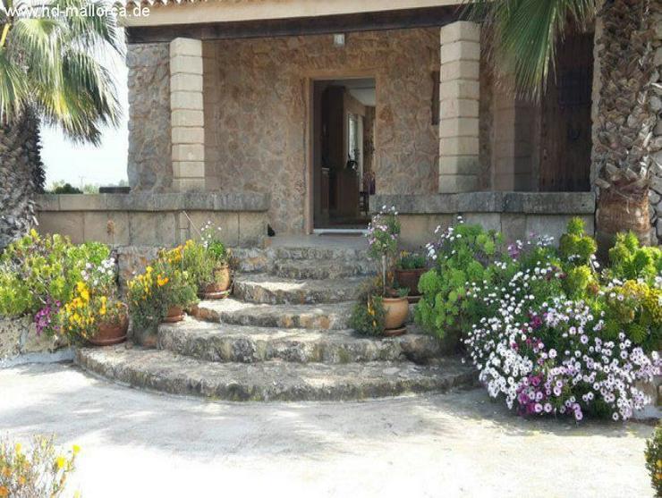 Bild 5: Haus in 07540 - Son Carrió