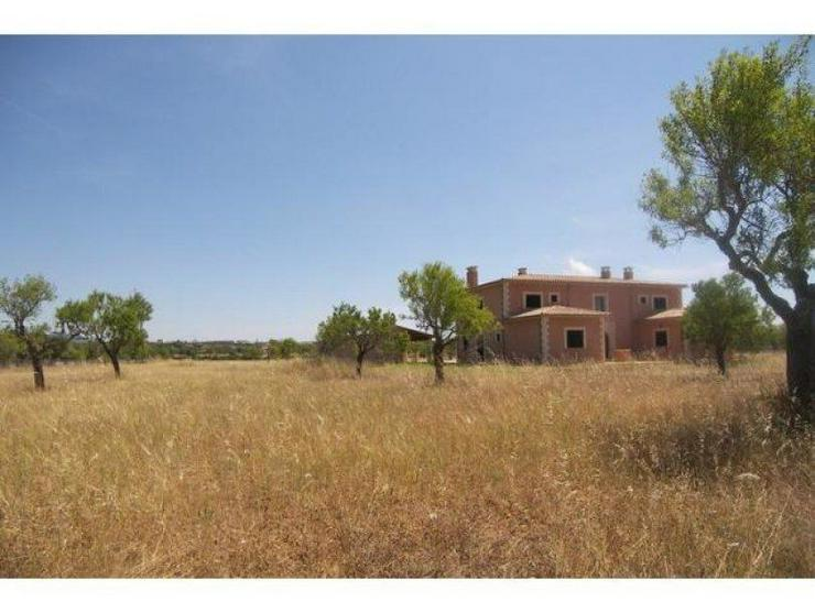 Bild 4: Haus in 07650 - Santanyí