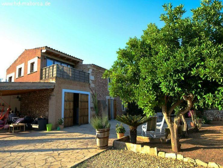 Haus in 07200 - Felanitx - Haus kaufen - Bild 1