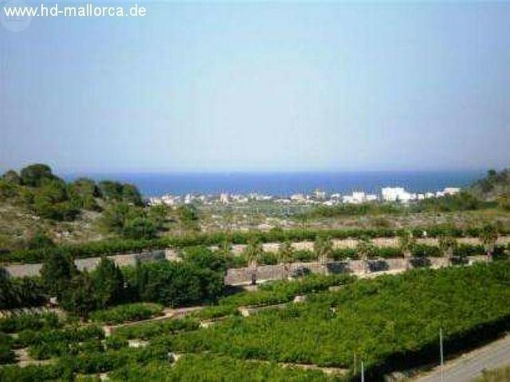 Grundstueck in 07830 - Cala Conta - Auslandsimmobilien - Bild 1