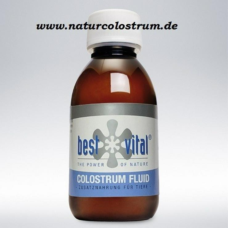 Bestvital® Colostrum Fluid für Ihr Tier