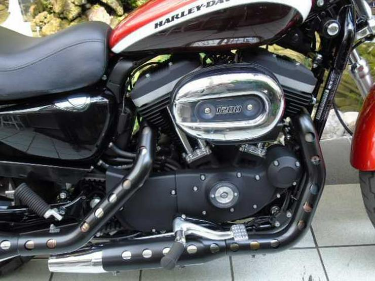 Bild 3: HARLEY DAVIDSON XL 1200 C Sportster Limited Edition