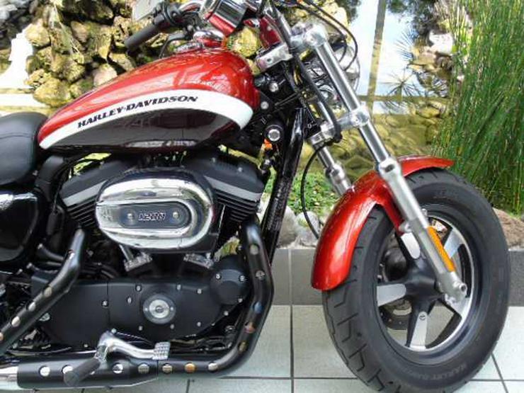 Bild 5: HARLEY DAVIDSON XL 1200 C Sportster Limited Edition