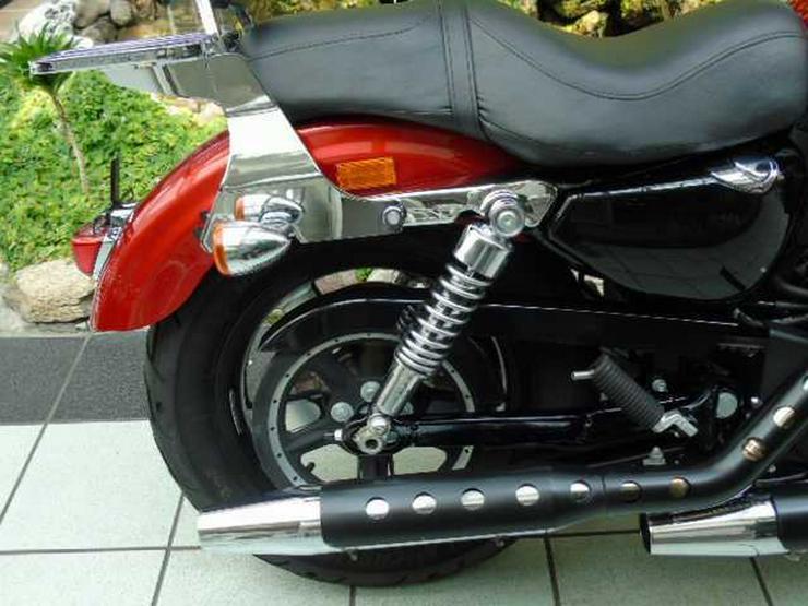 Bild 2: HARLEY DAVIDSON XL 1200 C Sportster Limited Edition