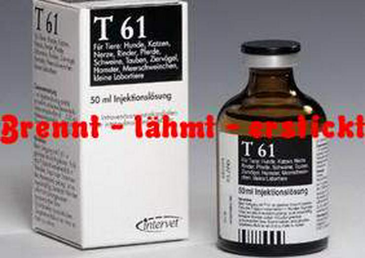 Bild 2: Gefälschtes Tötungsmittel T61 quält beim Einschläfern