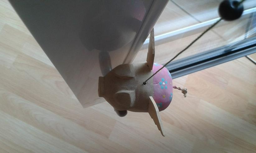 Bild 3: Fliegendes Schweinchen