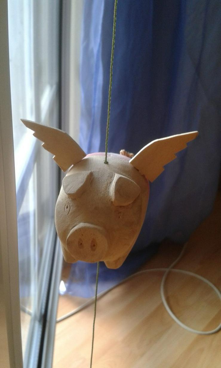 Bild 5: Fliegendes Schweinchen