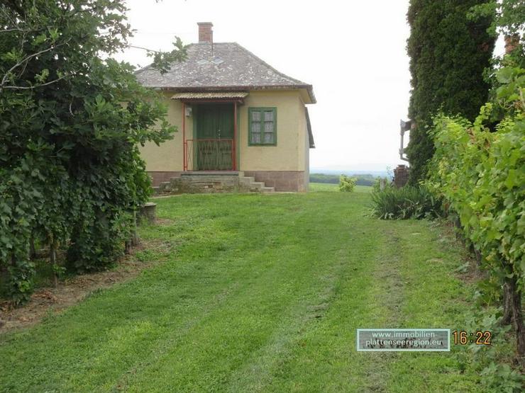 Bild 2: Weinberghaus Nr.82 Ungarn Balatonr.