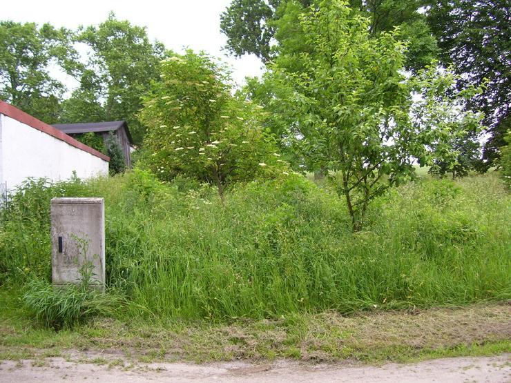Baugrundstück Nähe Lassan Ostseenähe in Krenzow