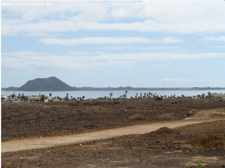 Bild 6: Grundstueck in 35660 - Corralejo