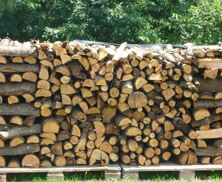 Brennholz bereit zu brennen