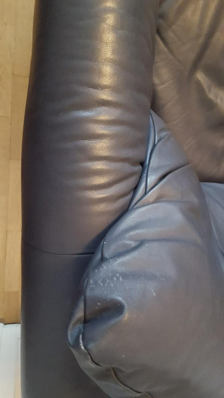 Bild 6: Blaue echtleder Sofagarnitur (auch Einzeln)
