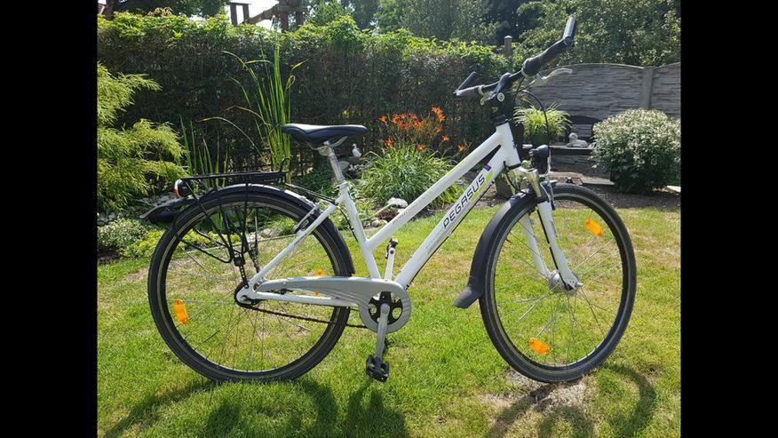 Bild 4: Pegasus 28 Zoll Trekkingbike weiß 7-Gang-Nabe