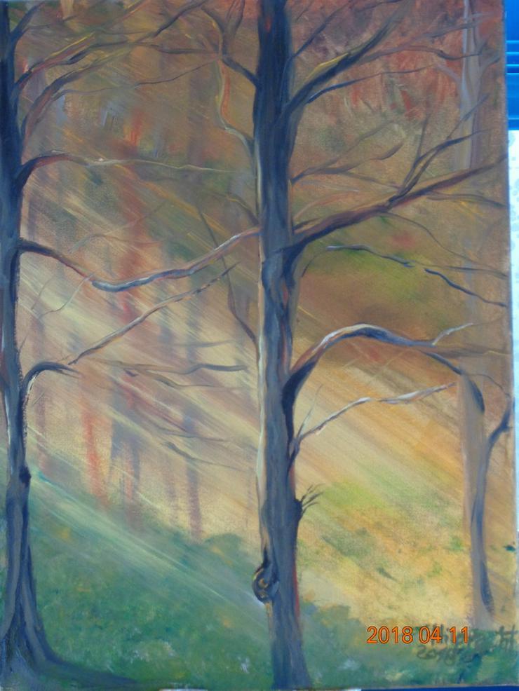 Bild 6: Ölbilder