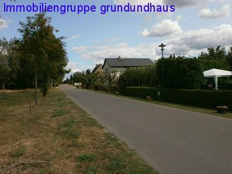 Bild 5: Idyllisch zwischen Schwielochsee und Scharmützelsee