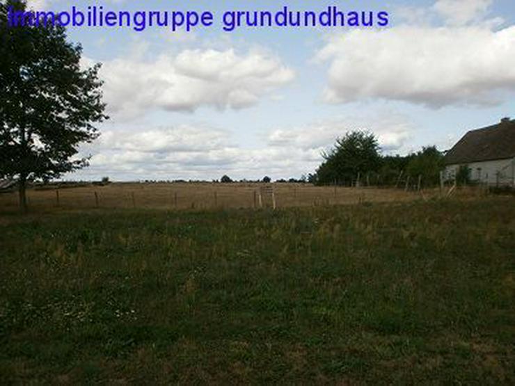 Idyllisch zwischen Schwielochsee und Scharmützelsee - Grundstück kaufen - Bild 1