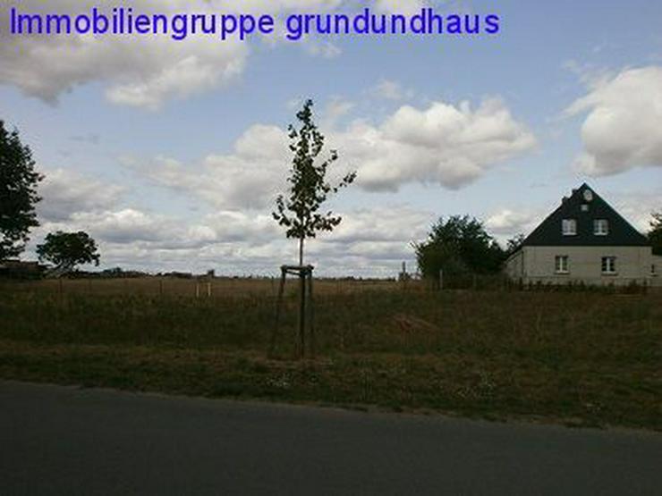 Bild 3: Idyllisch zwischen Schwielochsee und Scharmützelsee