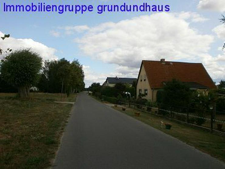 Bild 4: Idyllisch zwischen Schwielochsee und Scharmützelsee