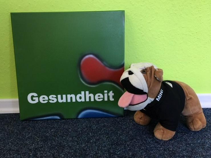 Aktionstag: Gothaer Tierkrankenversicherung