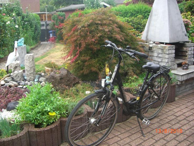 Winora Damen City-Rad schwarz