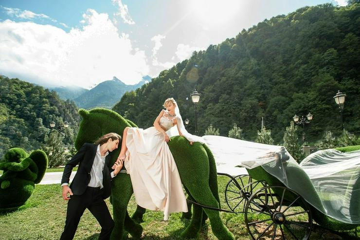 Bild 4: Deko Werbe Gartenfigur Pferdekutsche Topiary